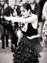 Sarsalé flamenco